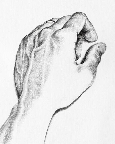 Artist's Hand - detail
