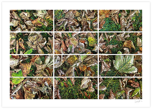 Autumn of Silence (Polyptych)