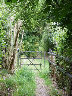Old metal gate on public footpath in Clapham West Sussex