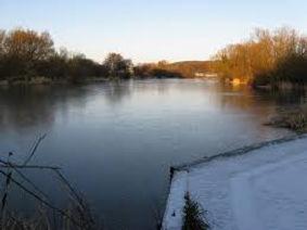 Patching Pond.jpg