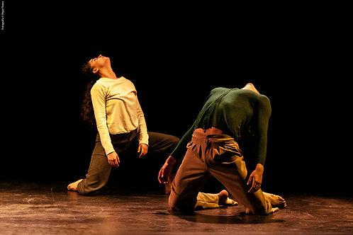 Danza Contemporánea. Mundo Distópico