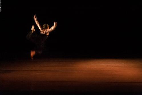 Danza Contemporánea. Semilla y Tallo