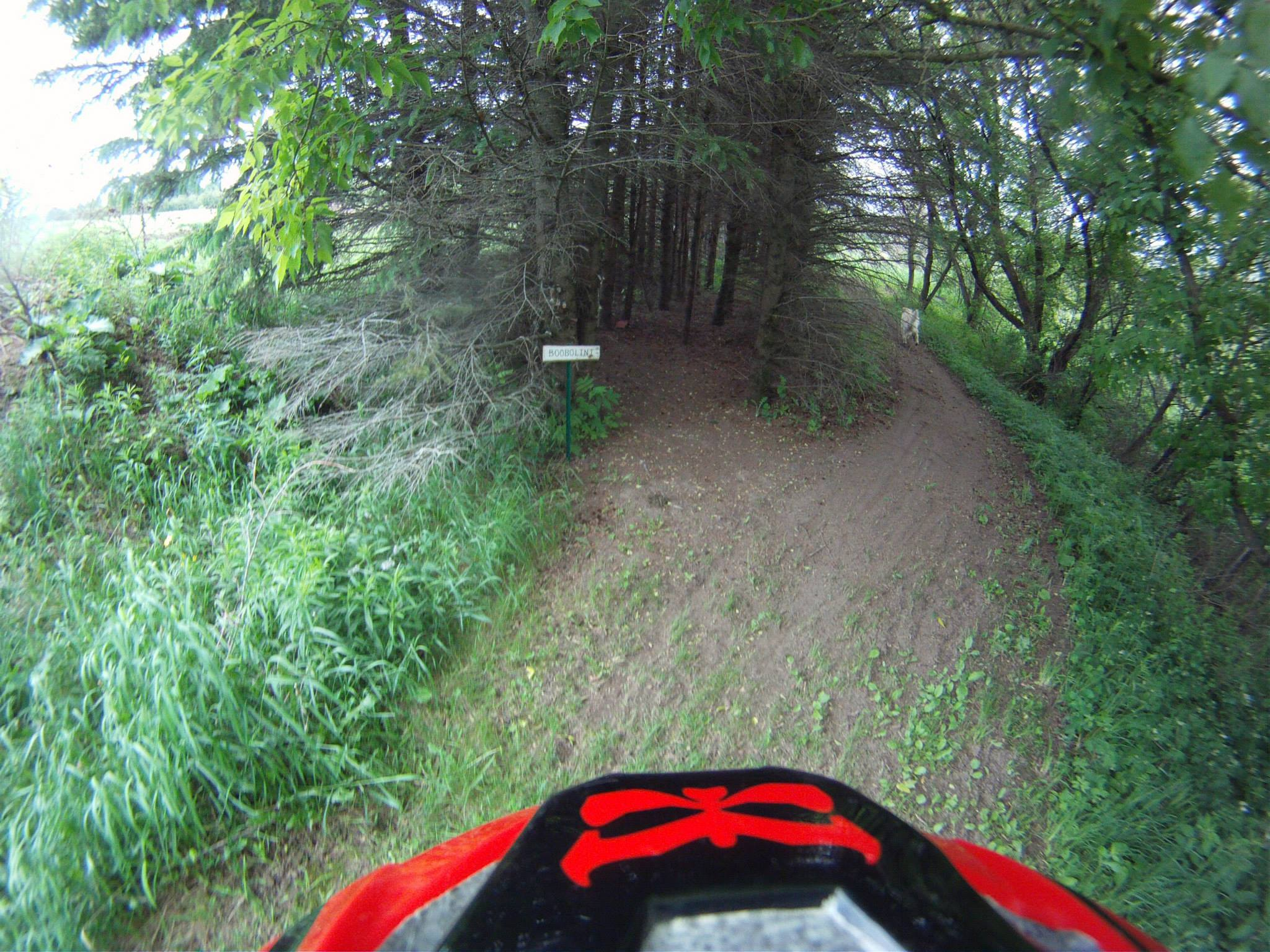 Boobolini trail