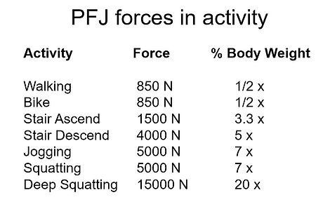PFJ forces.JPG