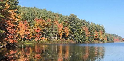 100 Acre Remote Pond.jpg