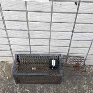 IoT Rat Trap Cage Sensor