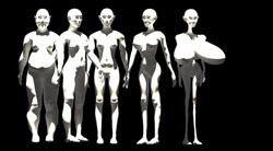Epidermis Evolution Theory 2