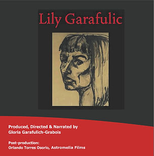 Lily DVD Cover 2020 Astromelia Films.jpg