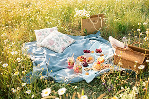 Picnic in the chamomile flower field  wi