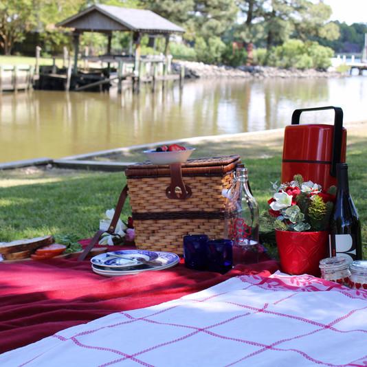 MoonFly backyard picnicking