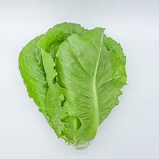 Cos Lettuce (สลัดคอส)