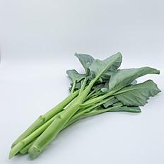 Chinese Kale (คะน้า)