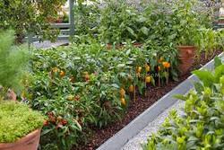 gardenservice.jpg