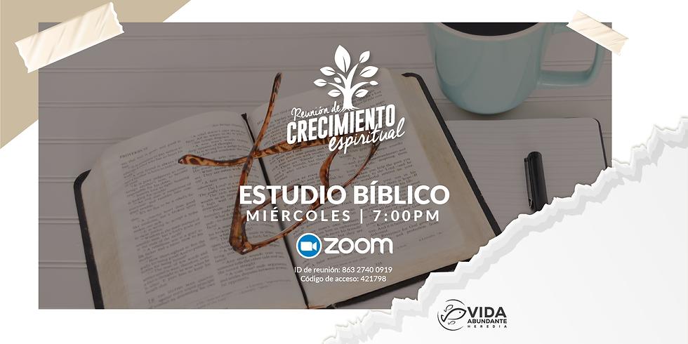 Estudio Bíblico Virtual