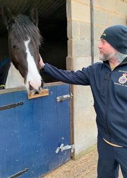 The horse whisper.jpeg