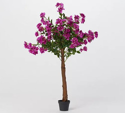 Wicker Park 5' Tall Indoor/Outdoor Fauz Azelea Tree