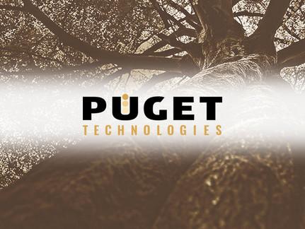 Puget Strives for Accretion