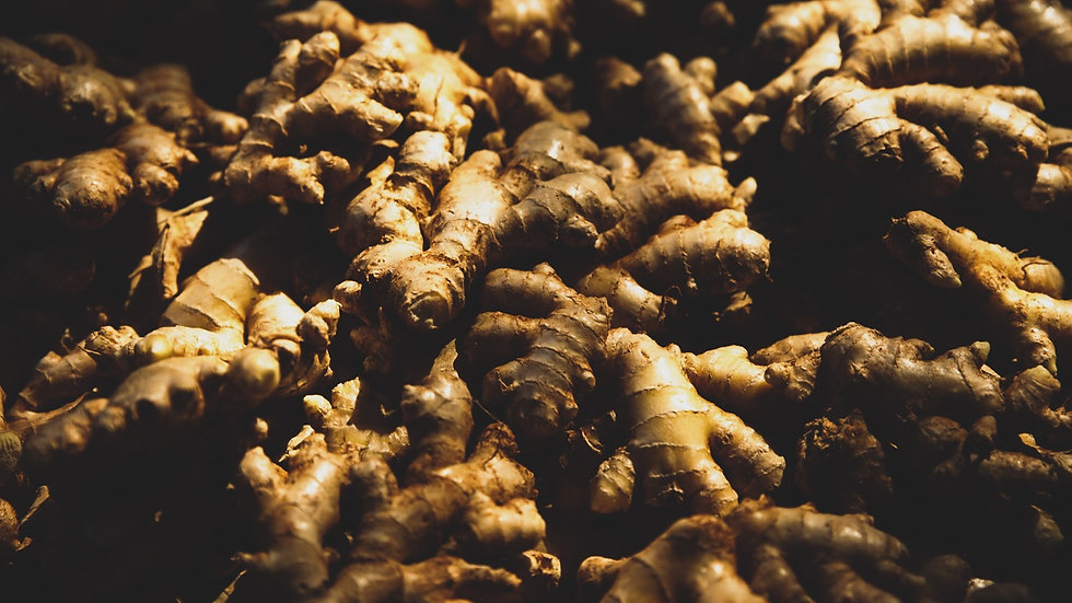 Organic Wholesale Ginger 25#