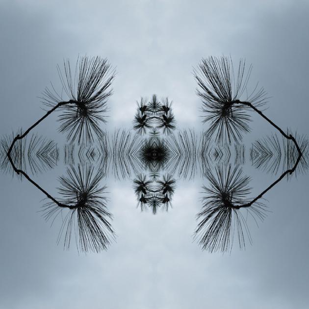 Meteoro-planta-18-copia.jpg