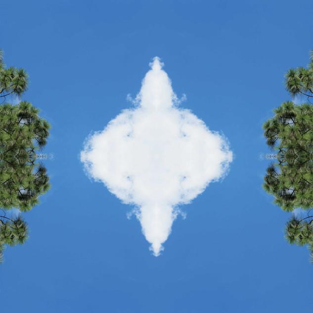 Meteoro-planta-nube #1