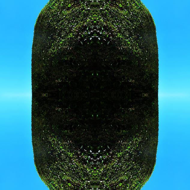 Meteoro-planta #32