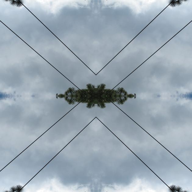 Meteoro-planta-cable-3-copia.jpg