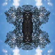 Meteoro-planta-7-copia.jpg