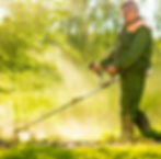 worker cutting grass in garden with the weed trimmer_edited_edited.jpg