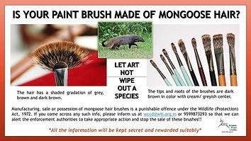 mongoose_hair_poster650.jpg