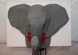Elephants & Poaching