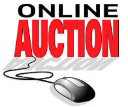 SETTING MAX BIDS In A Online Auction