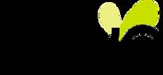 Logo Toyo publicidad.png