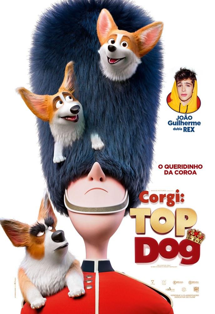 """O fofo """"Corgi: Top Dog"""", com dublagem de João Guilherme"""
