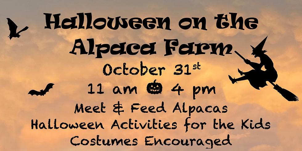 Halloween on the Alpaca Farm