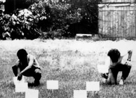 Performances urbanos, La Habana1989