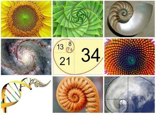 patterns in the Universe
