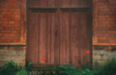 dver_tyulpan.jpg