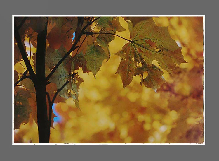 6_sky_yellow.jpg