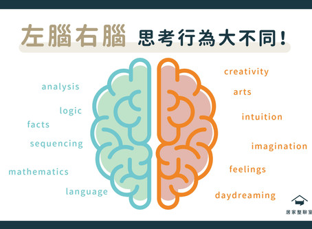 收納知識|左右腦大不同!你是哪一種思考類型?