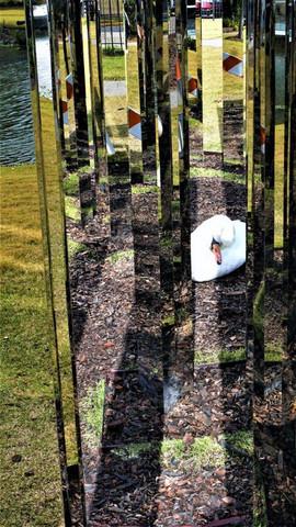 Sydney and Walda Besthoff, Sculpture Garden, New Orleans