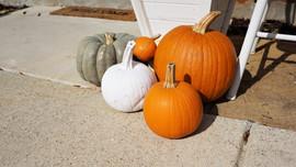 Pumpkins, Gruene