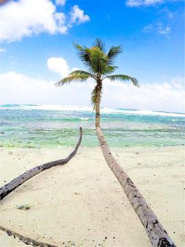 Playa Fronton Las Galeras Dominican Republic.