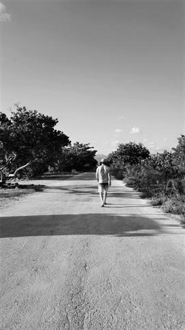 Lone wanderer, walking down the road