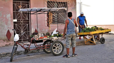 Fruit & Vegetable Vendors, Camagüey, Cuba