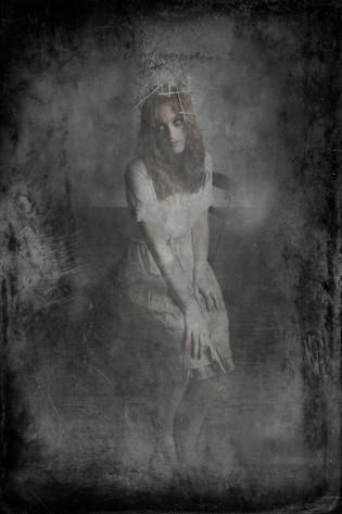 Queen Bee Tracy Whiteside--a.jpg