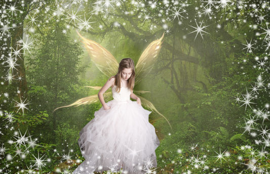 fairy princess in the woods photography