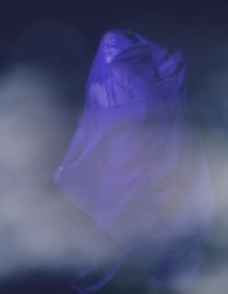 specter tracy whiteside