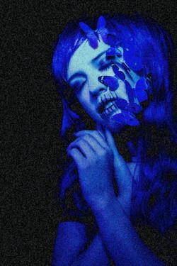 Baby Blue Noise Tracy Whiteside