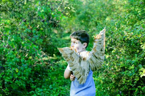 photography of boy in forest with wings