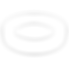 Seals Icon